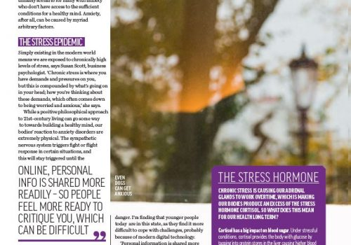 Healthy For Men - The Stress Epidemic