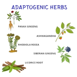 Adaptogenic herbs for stress